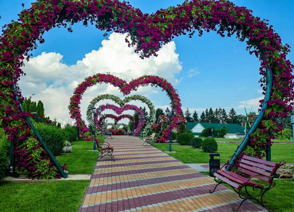Kalynovka park near Kyiv